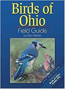 Spark Bird - First Field Guide