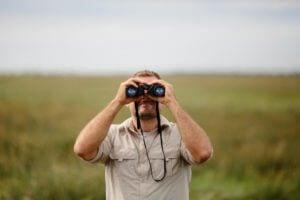 Bird Watching Tips and Tricks