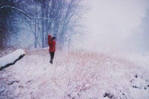 Leica Noctivid 8x42 Review