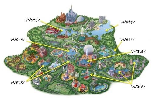 Place Around Disney to Watch Birds