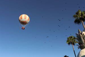 Black Birds in Air Above Disney