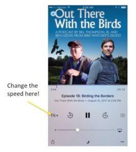 Birds Podcast