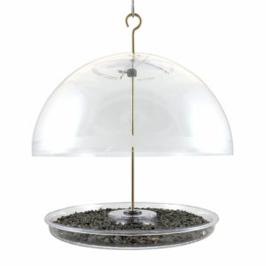 Dome Bluebird feeder