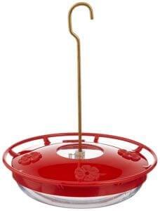 Best Dish Hummingbird Feeder - Plastic