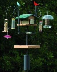 best bird feeder pole system