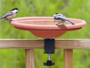 bird baths for deck