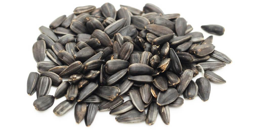 types of bird seed - black-oil sunflower