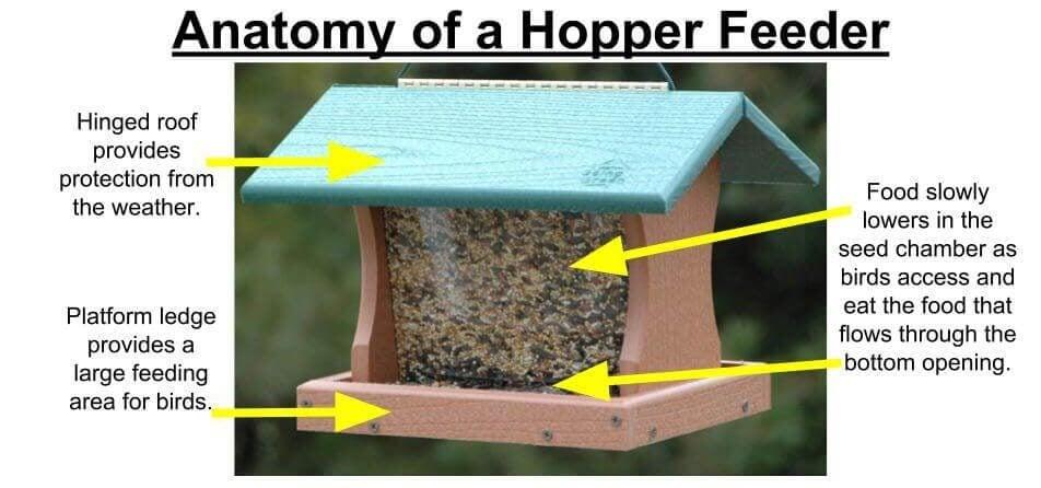 anatomy of a hopper bird feeder