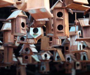 13 FREE Birdhouse Plans (Easy PDF/Video Instructions!)