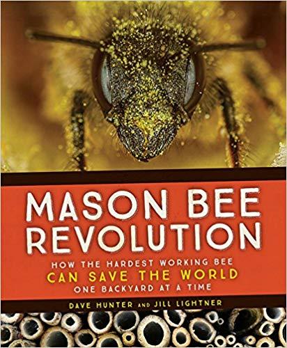 mason bee book