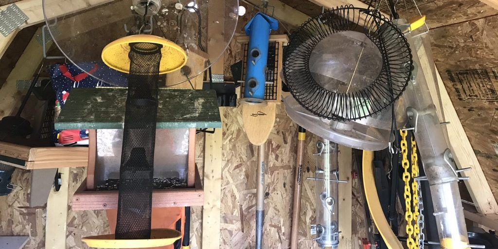 bird feeders in my shed