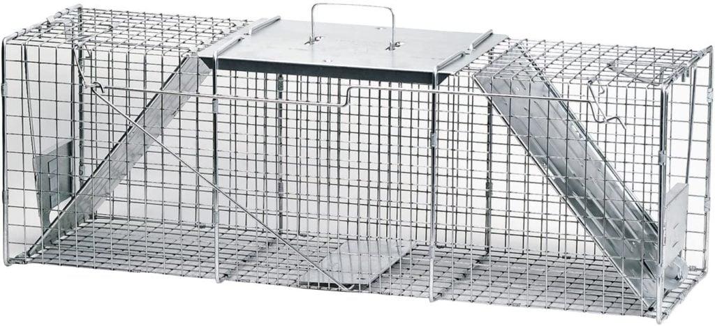 raccoon trap for keeping raccoons away from bird feeders