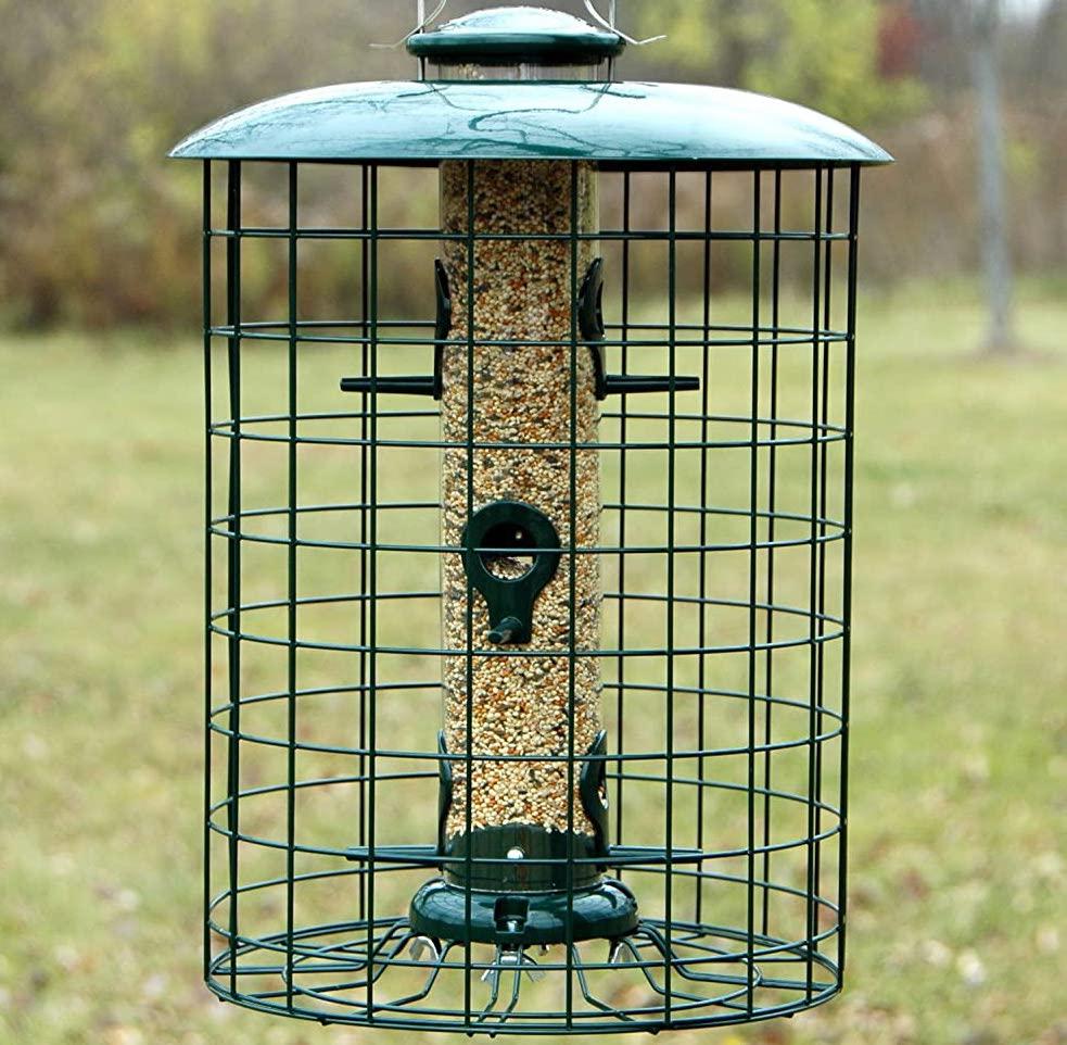 birds feeders that stop raccoons
