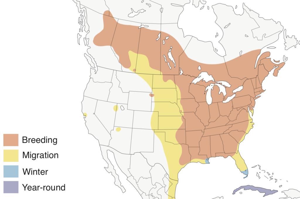 Broad-winged Hawk Range Map